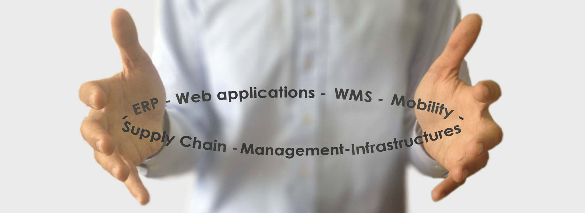 ERP, Web applications, WMS, Mobility, Supply Chain, Management, Infrastructures.